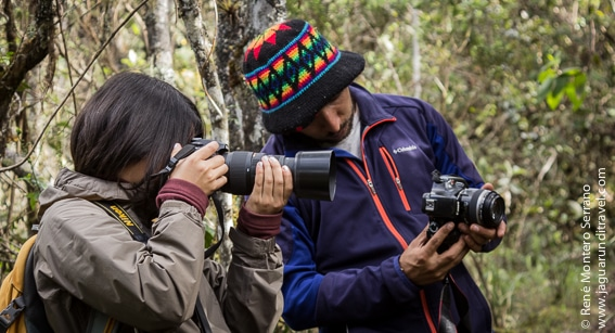 nature photography journey colombia